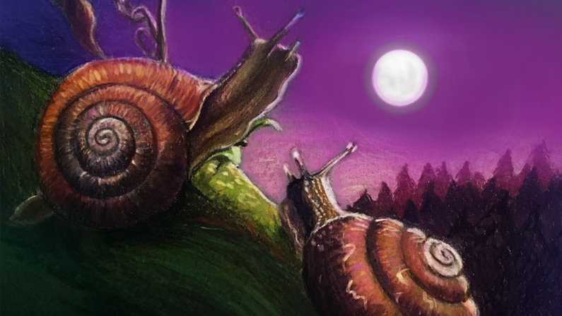 Survive the DOOM Feelings like a Snail