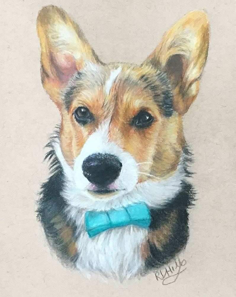 corgi dog portraits by Glowbug Design, Truro Nova Scotia