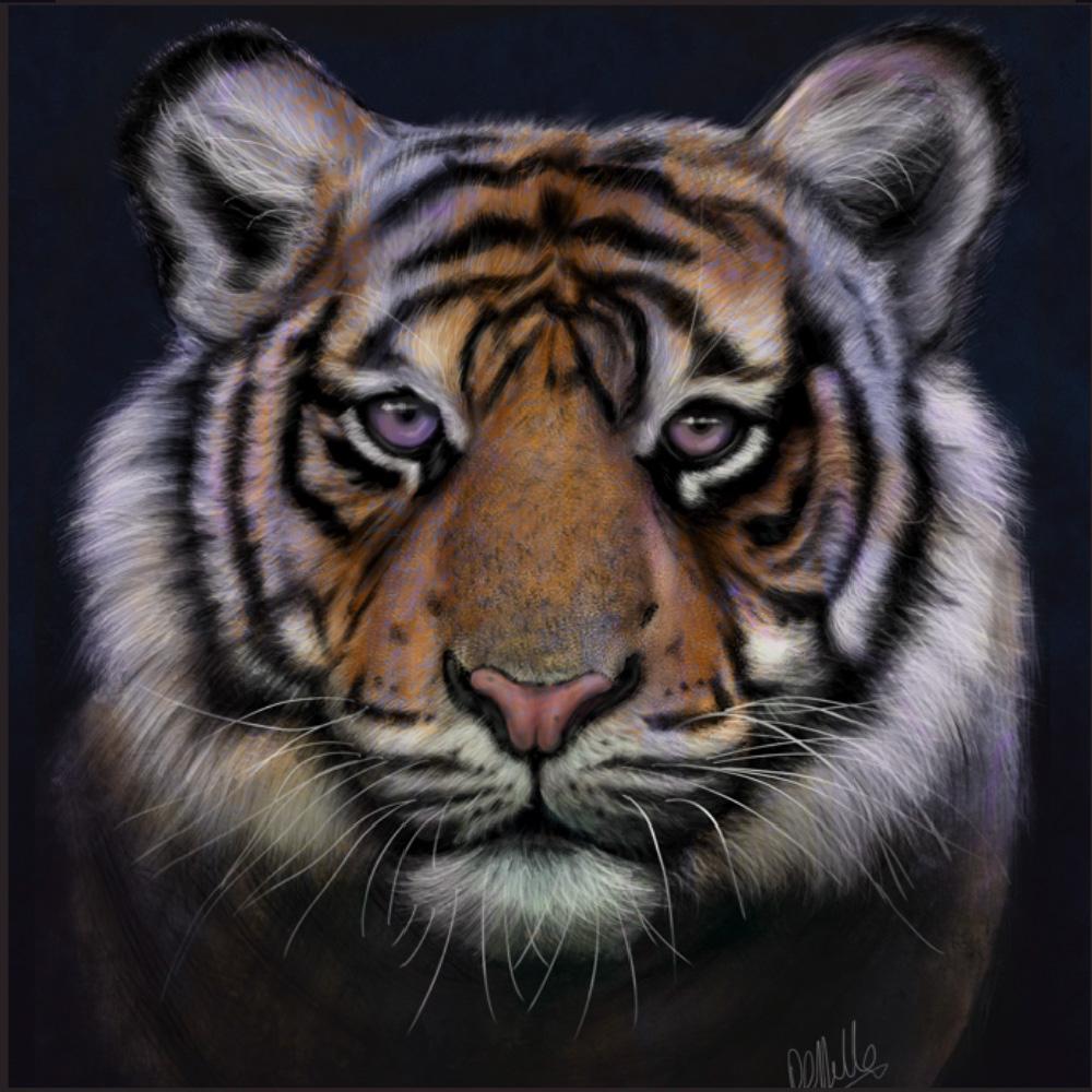 tiger digital illustration poster